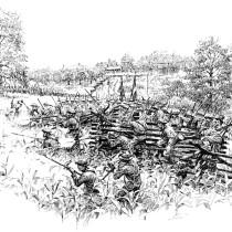 Fight in the Cornfield
