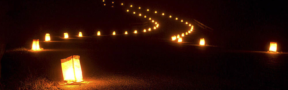 Luminaries Christmas Lights